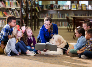 library childrens storytime website banner - Solutions